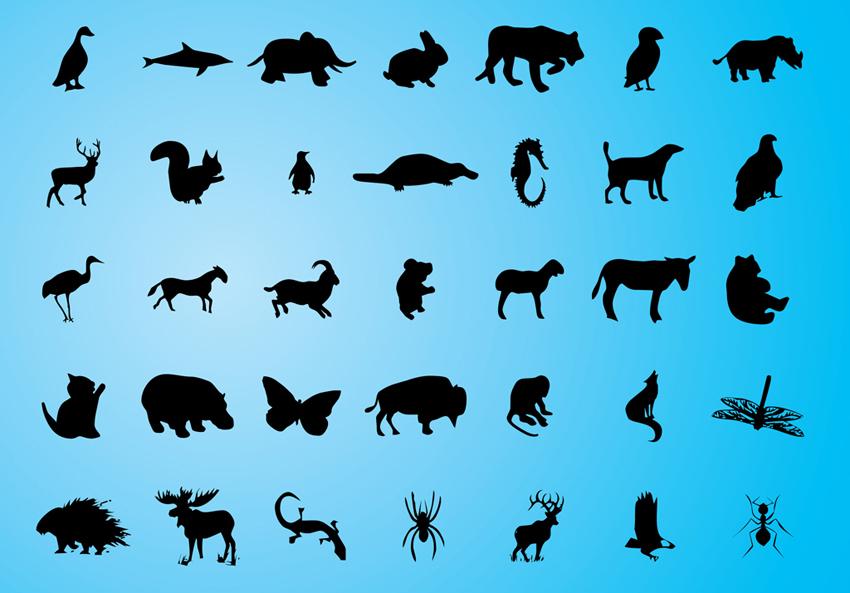 Нарисованные тени животных